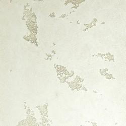 Пример нанесения фактурного покрытия - образец DV07