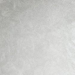 Пример нанесения фактурного покрытия - образец DV08
