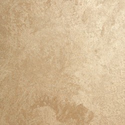 Пример нанесения фактурного покрытия - образец DVS18