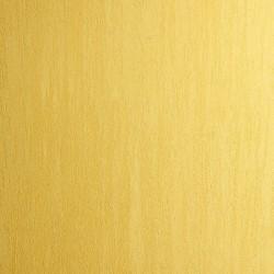 Пример нанесения фактурного покрытия - образец DVS21